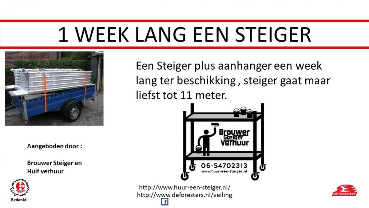 Steiger - kopie